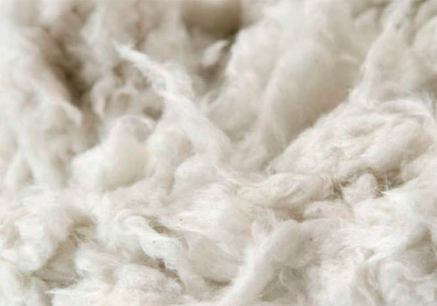 Wool Week: Celebrating Greatness in Every Fibre